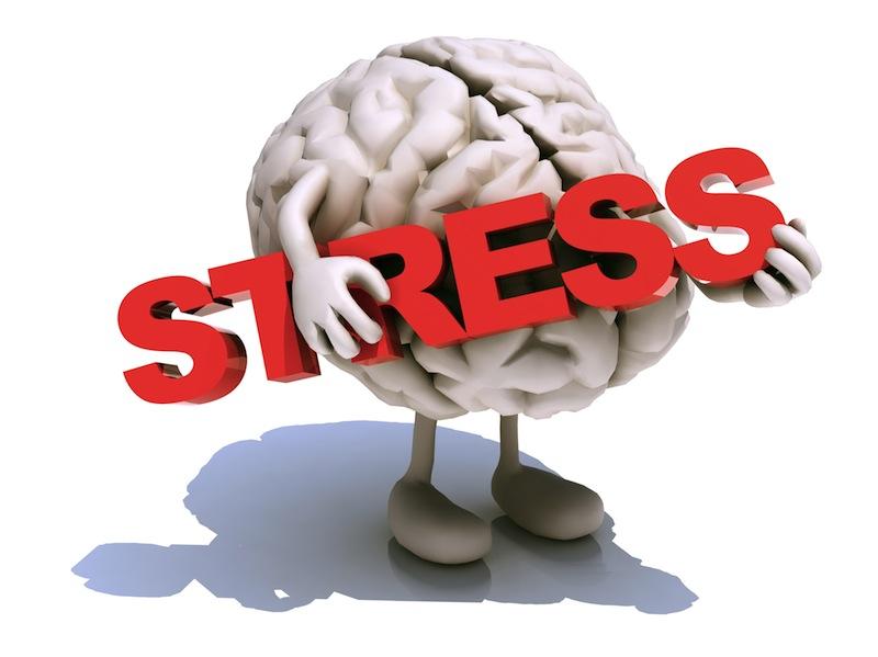 Gelozia, invidia, lăcomia cauzează stres