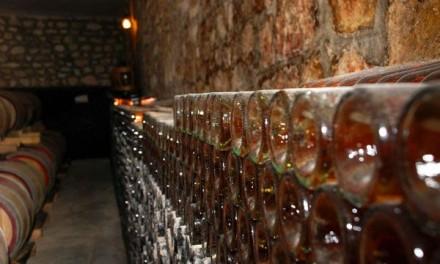 Povestea vinului – Conservarea, îmbătrânirea şi transportul